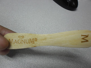 MAGNUM: My First Bite